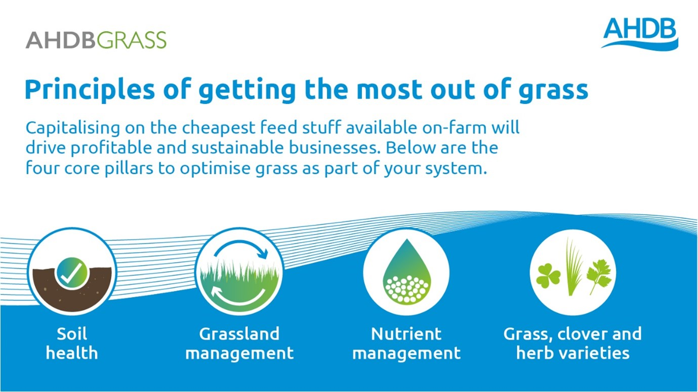 AHDB Principles for getting the most out of grass