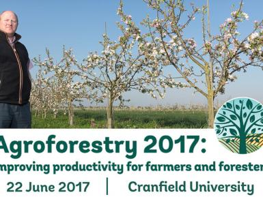 Agroforestry 17