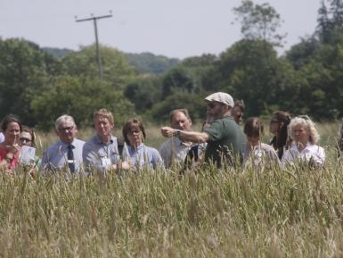 Bruce Pearce on wheat populations