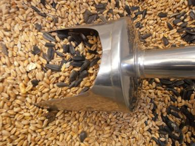 Grain & seeds, Elm Farm