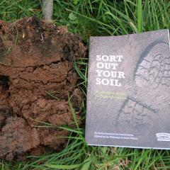 Sort Out Your Soil