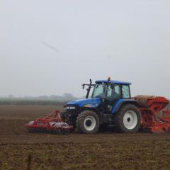 Drills establishing spring wheat: power harrow combination drill, Minimum tillage Vaderstad drill, Ecodyn direct drill