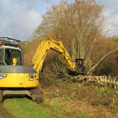 Dymax tree shears on 8 t excavator 4, Elm Farm, 11 Dec 2014