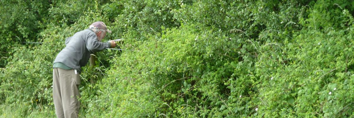 Assessing_hedgerows_for_biodiversity_protocol